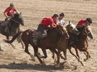 Paardenrace in Kirgizië I Zeppelin Reizen