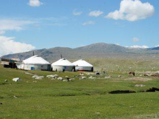 Ontdek de steppen van Mongolië