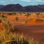 Namibië Reizen I Zeppelin Reizen I Unieke reizen op maat