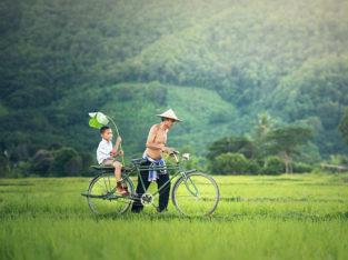 Reis Cambodja - Zeppelin Reizen