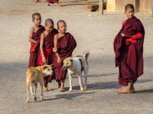 Reis naar Myanmar met Zeppelin Reizen