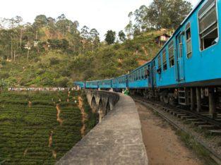 Sri Lanka - Treinreis van Nuwara Eliya naar Ella I Zeppelin Reizen