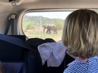 Op reis met kinderen naar Zuid-Afrika I Zeppelin Reizen