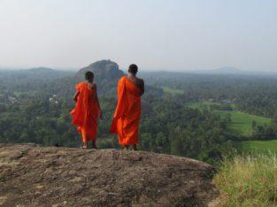 Reis Sri Lanka
