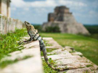 Mexico rondreis - Zeppelin Reizen