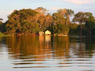Reis naar Brazilië - Amazonegebied I Zeppelin