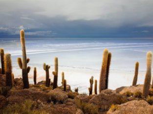 Reis Bolivië - Zoutvlakte van Uyuni